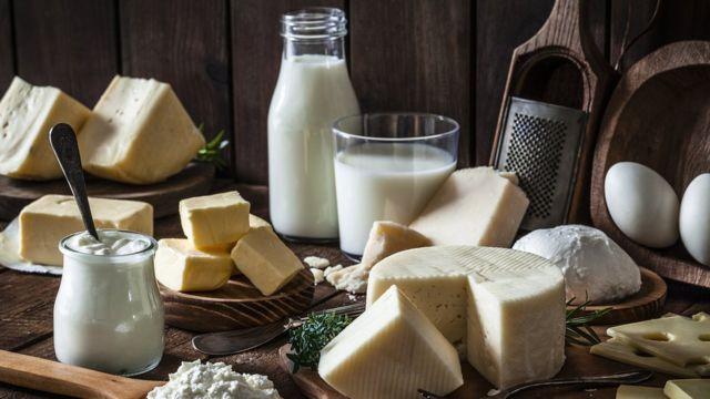 Quesos y lácteos