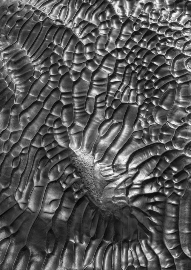 An aerial view of natural patterns in soil