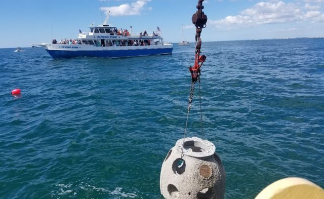 An Eternal Reefs reef being placed in the sea