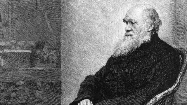 查爾斯·達爾文