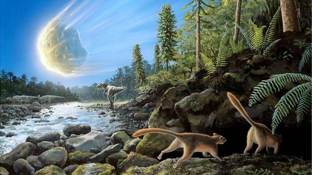 Rise of mammals 'began well before dinosaur extinction'