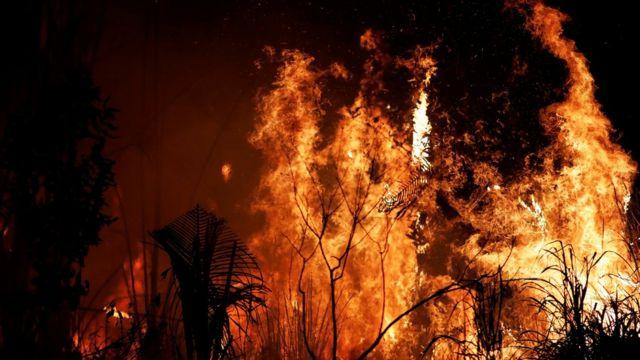 Incendios en el Amazonas: 7 países de Sudamérica se comprometen a proteger  a la Amazonía en el Pacto de Leticia - BBC News Mundo