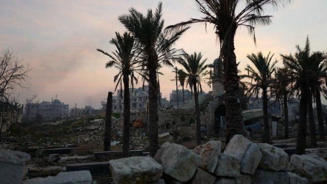 صورة لبعض مناطق حلب ذات النخيل