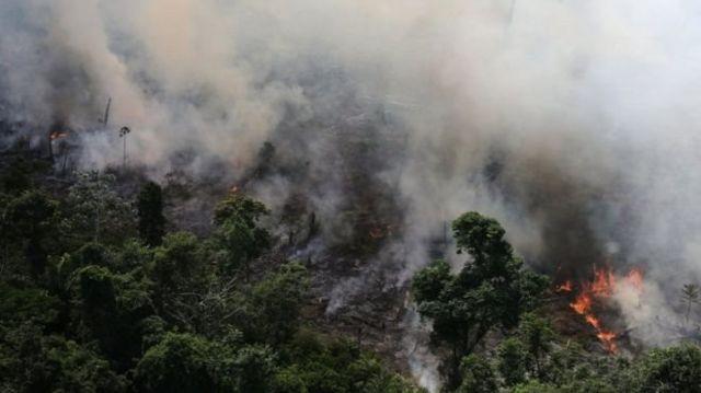 ไฟป่าแอมะซอน