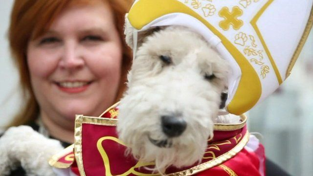 Dog dressed as the pope