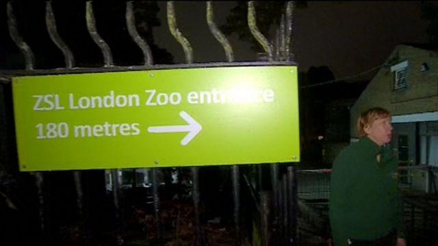 People leaving London Zoo