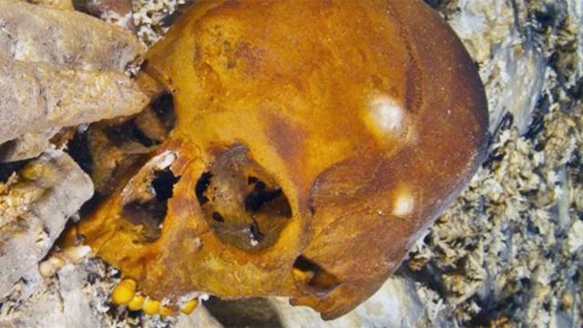 Cráneo de Naia