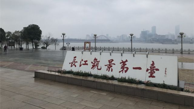 """郭晶记录了武汉""""封城""""以来的生活点滴,与BBC分享"""