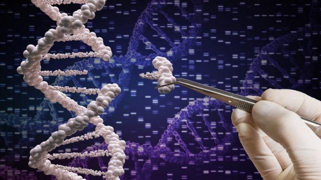 ડીએનએની સાંકેતિક તસ્વીર