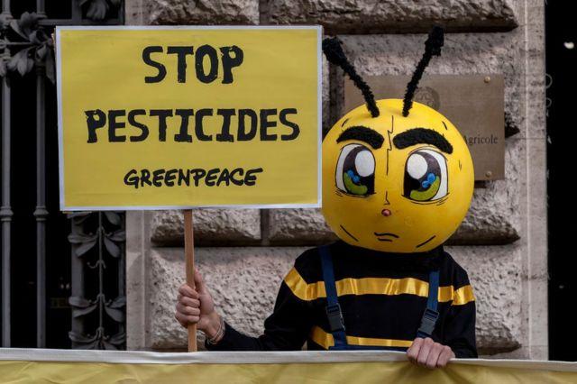 Una persona vestida de abeja con un cartel
