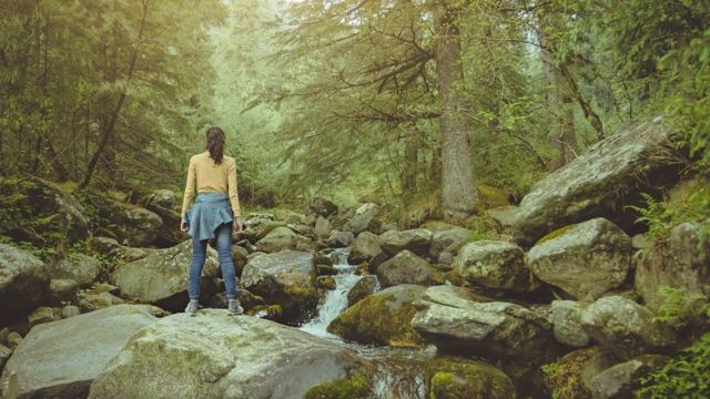 Young woman enjoying fresh air near stream in pine jungle.