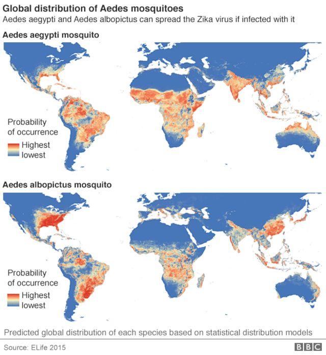 ジカウイルスを媒介するネッタイシマカ(上)とヒトスジシマカ(下)の生息地