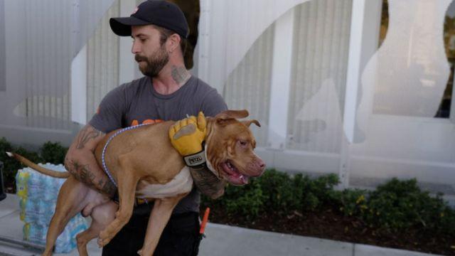 """чоловік рятує собаку під час урагану """"Ірма"""""""
