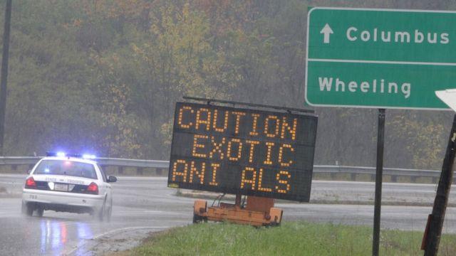 Aviso em estrada alerta sobre animais selvagens à solta