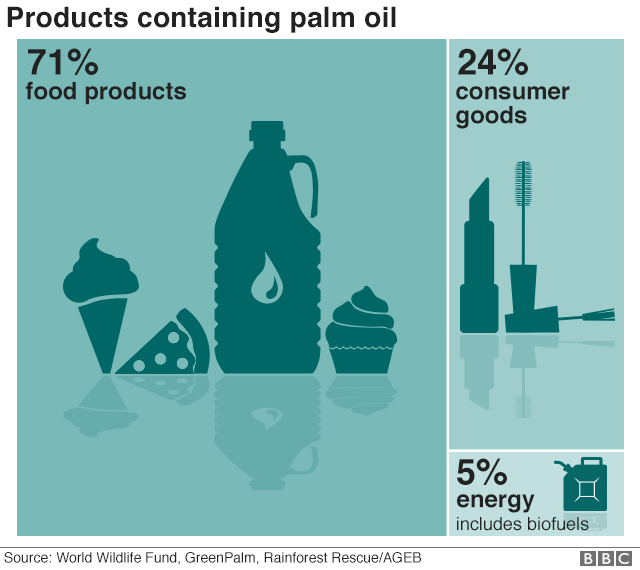 Infographic palm oil in products