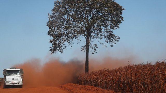 Un camión levanta polvo al transitar por un camino de una zona deforestada de la Amazonía en Rondonia, Brasil, el 28 de junio de 2017.
