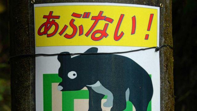 注意熊的警示牌