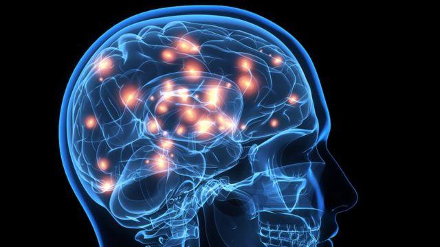 Diseño cabeza y cerebro humano