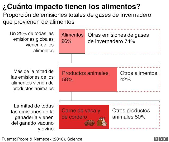 Gráfico sobre el impacto ambiental de la comida.