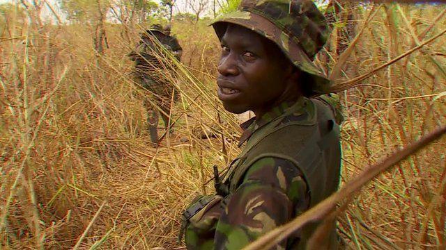 Ranger in DRC