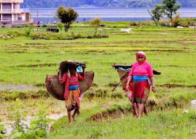 पोखरामा सेती नदीको फाँटमा खेतमा काम गरेर फर्किँदै दुई महिला