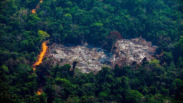 Foto aérea mostra clarão no meio da floresta, com área incendiada