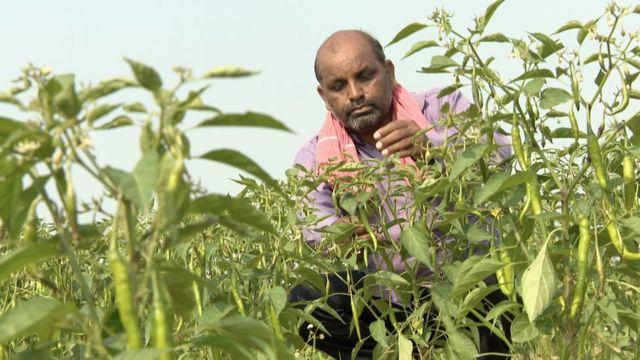 올해 39살의 농부 비젠드라 타드비는 동상이 아닌 농업에 투자해야 한다고 비판했다