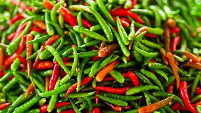 Chiles verdes y rojos