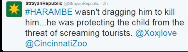 「ハランビは殺そうとして引きずったのではない、叫ぶ観光客から守ろうとしたんだ」と「StrayanRepublic」さんはツイート