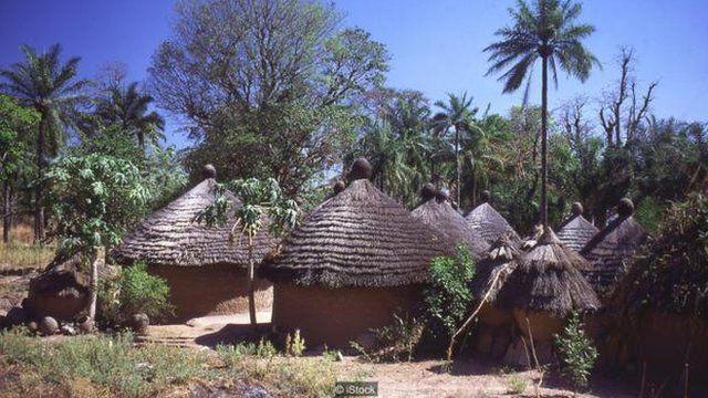 一夫多妻制在西非普遍存在——这也导致很多不同寻常的疾病集中出现。