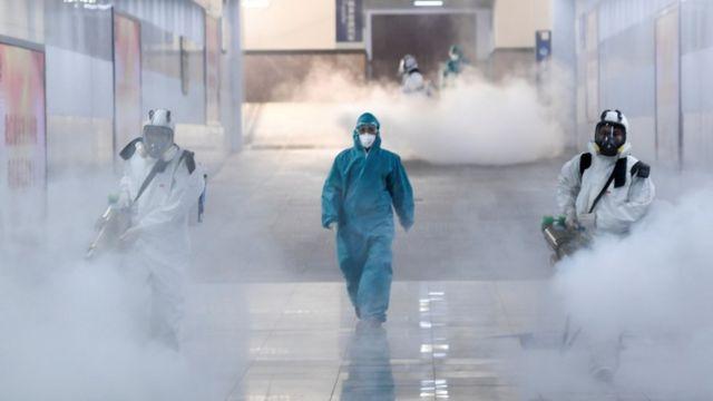 新型コロナウイルス、正式名称はどうやって決まるのか - BBCニュース