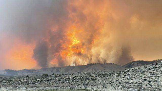 İtfaiyeciler yangınları kontrol altına almak için mücadele ediyor