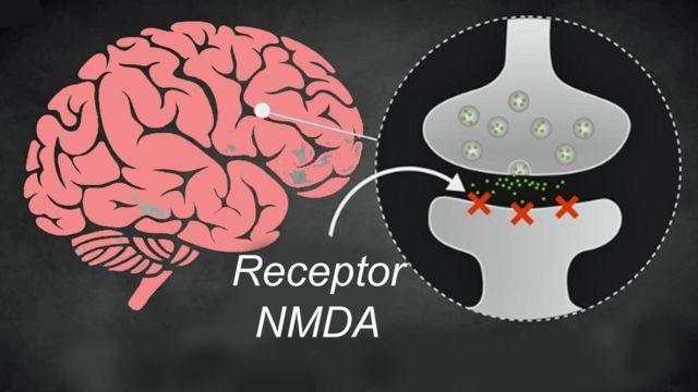 Gráfico de lo que pasa en el cerebro