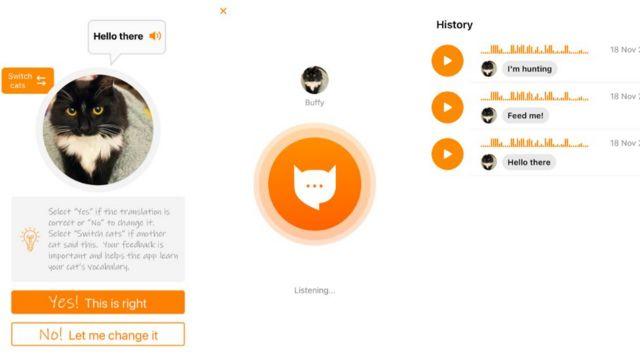 BBC Teknoloji Muhabiri Cristina Criddle uygulamayı kedisi üzerinde denedi