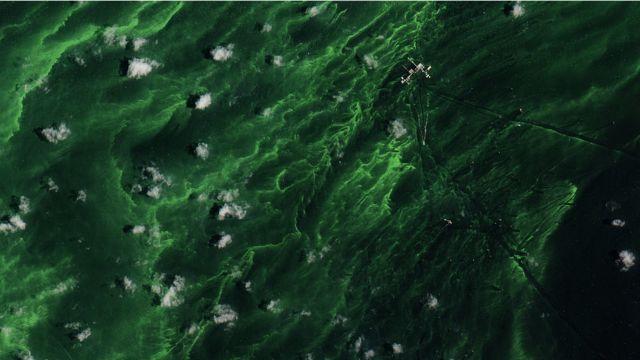 El color verde obedece a presencia de algas que ocasionan problemas economicos y de salud a los locales.