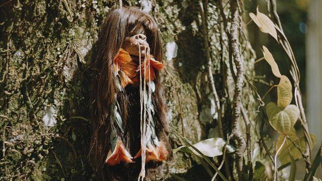 Cabeça encolhida na Amazônia nos anos 1960
