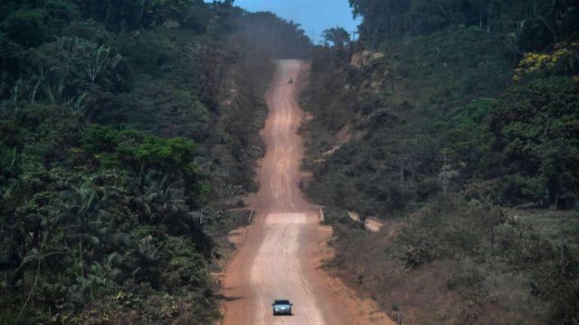 Camino de tierra en medio de una selva.