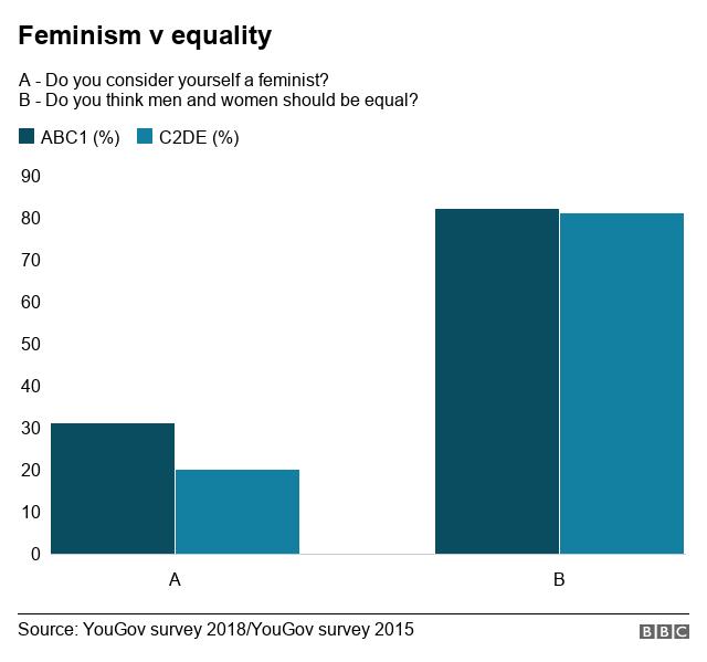 Feminism v equality