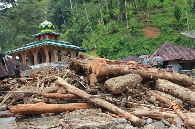 Beberapa warga berada di antara kayu yang terbawa arus sungai pascabanjir bandang yang terjadi, di Desa Muara Saladi, Kecamatan Ulu Pungkut, Mandailing Natal, Sumatra Utara, Sabtu (13/10). Banjir bandang yang terjadi pada Jumat (12/10) melanda sembilan kecamatan di Kabupaten Mandailing Natal.