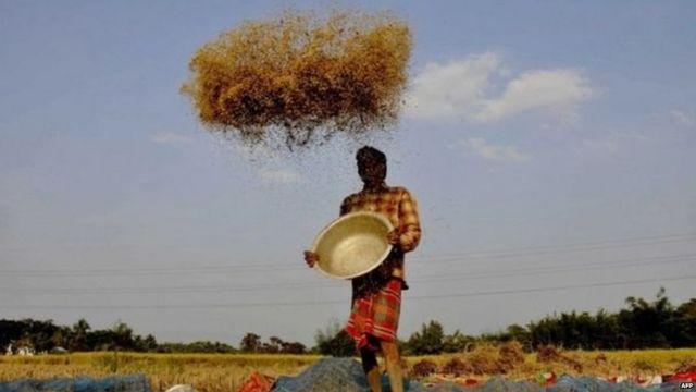 कर्ज़ में दबा किसान