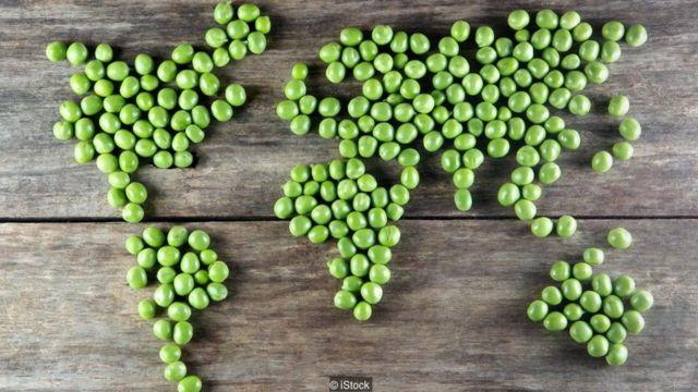 vejetaryen dünya haritası