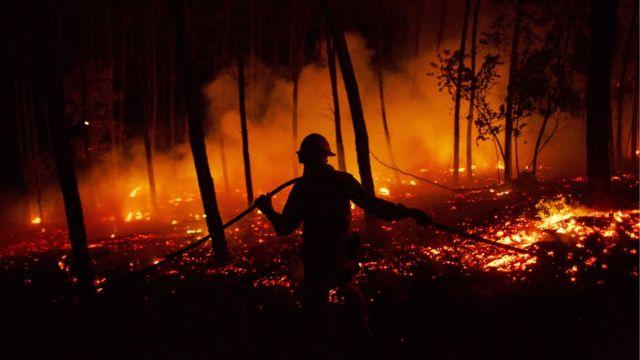 Тушение пожара в Португалии