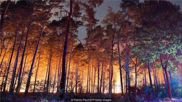 德國消防隊員最近在距離柏林僅50公里的森林大火中奮戰。科學家擔心,這樣的火災會越來越多。