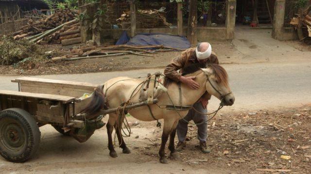 Siu Pham, Con đường trên núi