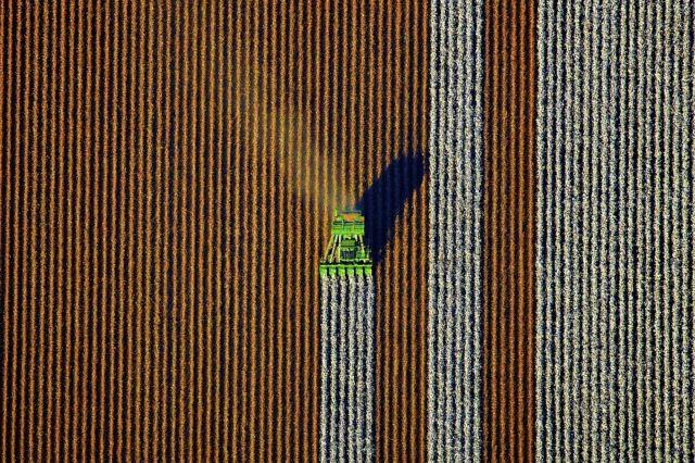 صور جوية تبرز تنسيق مزرعة استرالية