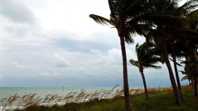 Ураганы наносят Гаити огромный ущерб