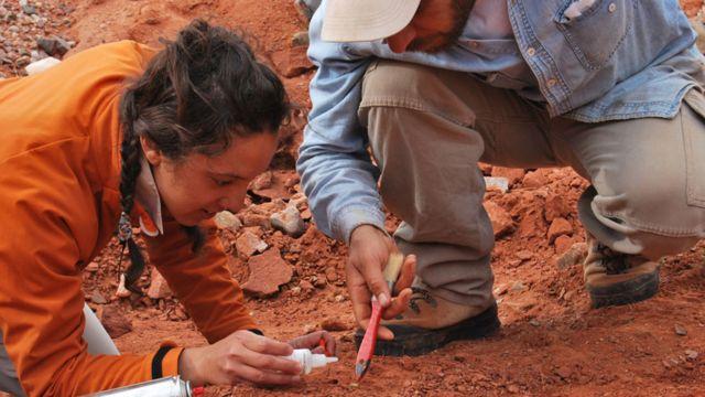 Cecilia Apaldetti y Diego Abelín, descubridor de Ingentia prima, desenterrando un dinosaurio