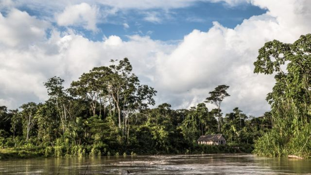 Casa ribeirinha em meio à mata e na beira de um rio na região amazônica