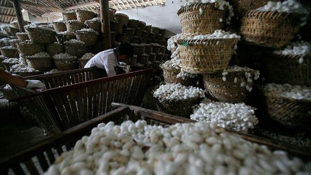 Producción de seda en China.