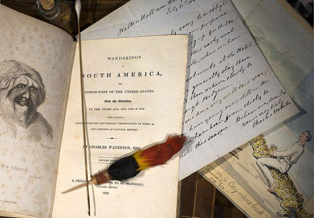 Libros, dibujos y cartas de Charles Waterton